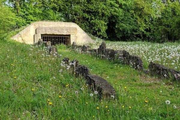 Megalithgrab Atteln